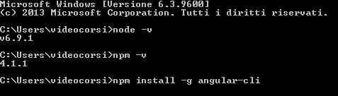 npm install -g angular-cli